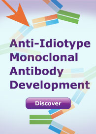 Anti-Idiotype Monoclonal Antibody 