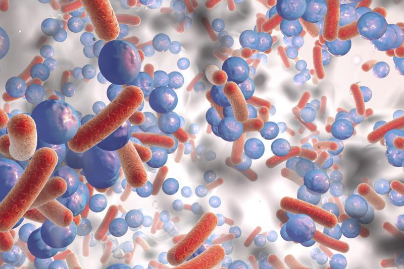 Researchers Uncover Another Tool To Fight Superbugs - QED Bioscience, Inc